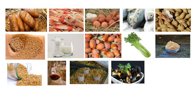 14  alérgenos presentes en los alimentos